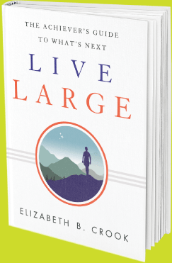 Book - Live Large by Elizabeth B Crook